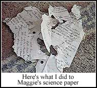 Sherlock and Maggie's Science Paper